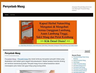penyebabmaag.com screenshot