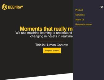 beemray.com screenshot