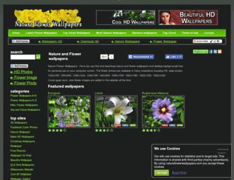 08bb3f8941247ef1193fbd783cdf50f60fe96610.jpg?uri=natureflowerwallpapers