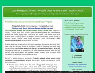 0fc246acdb1fb626768bacc21bc6b06036df53db.jpg?uri=solusi-jerawat.blogspot