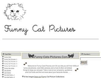 1654e1fe5198e9b75afc5b5f51ca35d598c4e855.jpg?uri=funny-cat-pictures