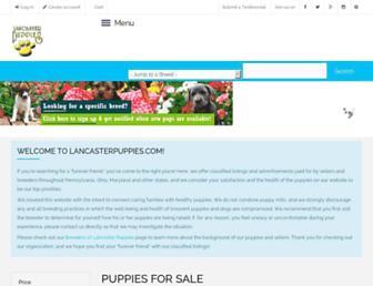 Thumbshot of Lancasterpuppies.com