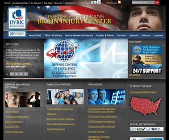 dvbic.org screenshot
