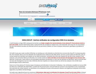 Main page screenshot of dnslookup.fr