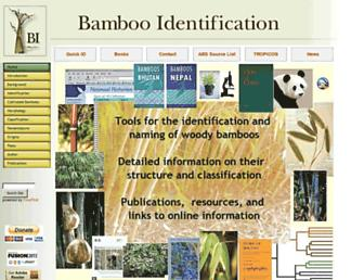 2cb35483ebc575eff0712061e7a0993e4fb214f5.jpg?uri=bamboo-identification.co