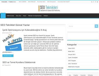 seoteknikleri.com screenshot
