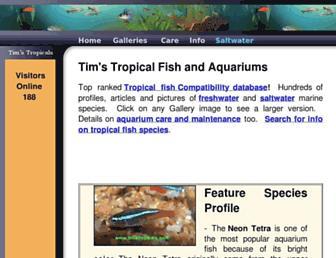 319fbf145950bd5fbf1afdeb4c1ef47cabe7d204.jpg?uri=tropicalfishandaquariums