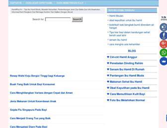 hamilplus.com screenshot