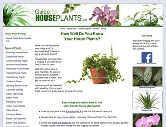 363043f4cf0947cff5d94f1cfe21c208e5293344.jpg?uri=guide-to-houseplants
