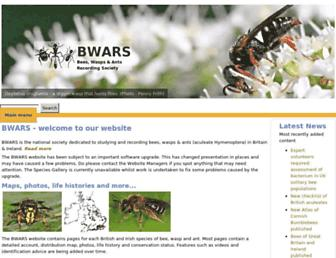 bwars.com screenshot