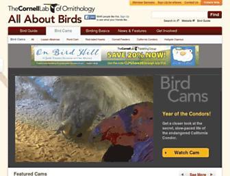 cams.allaboutbirds.org screenshot