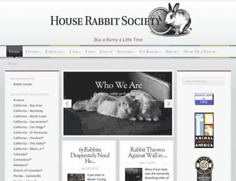 Thumbshot of Rabbit.org