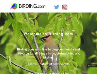504891ad73653b4bfbeff37990d0cd0d439a2d9b.jpg?uri=birding