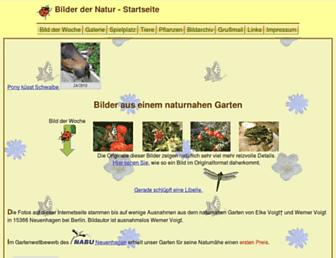 53fc2beb46c3a846cee9fca93fee36b4381a55e5.jpg?uri=bilder-der-natur