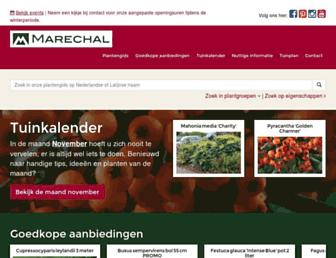 Main page screenshot of marechal.be