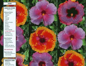 5d197ce438bff4d471dcb19e3a61e7584a04271a.jpg?uri=exotic-hibiscus