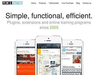 Thumbshot of Net-factor.com