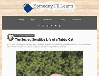 Thumbshot of Somedayilllearn.com