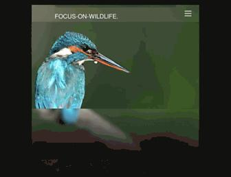 7430795eb8718c07b7de835a374707082d1ae341.jpg?uri=focus-on-wildlife