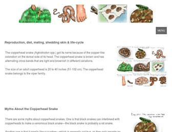 Main page screenshot of copperheadsnake.net