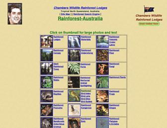 8511ff51e14a1a803b58c2a4acdbabd1ce207390.jpg?uri=rainforest-australia