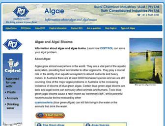 8673e1035ed4347f2cb9c5f5853813a2987e48c1.jpg?uri=algae