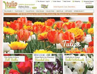 8b40afbc0d0c4ffcdf22b19b8e49a0255b5d1101.jpg?uri=tulipworld