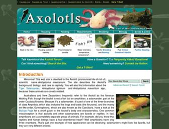 8d081fce039f00d25c9ba33d3d5d6bd2b9ba58e4.jpg?uri=axolotl