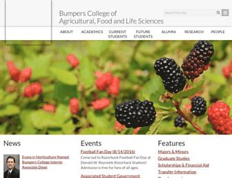 bumperscollege.uark.edu screenshot