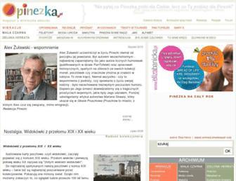 Main page screenshot of pinezka.pl