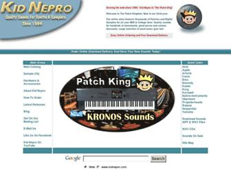 kidnepro.com screenshot