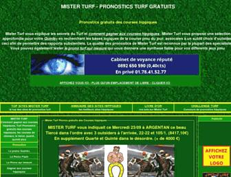 mister-turf.com screenshot