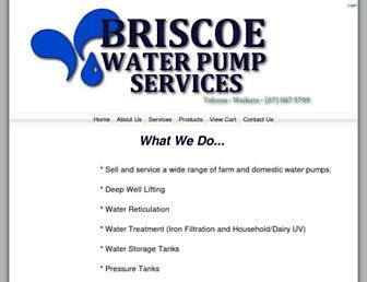 briscoewaterpumps.co.nz screenshot