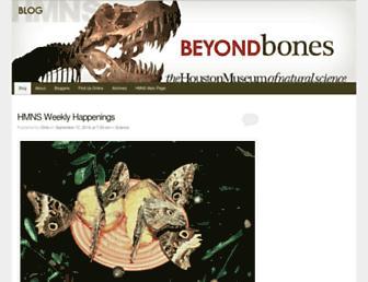 Main page screenshot of blog.hmns.org