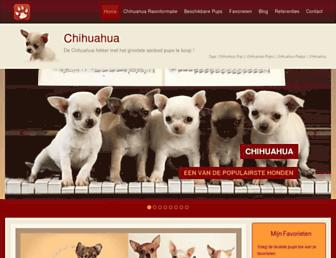 B8370afb9086e7414f13d3506d72d7680bd70443.jpg?uri=chihuahua-online