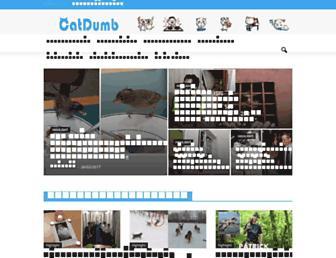 catdumb.com screenshot
