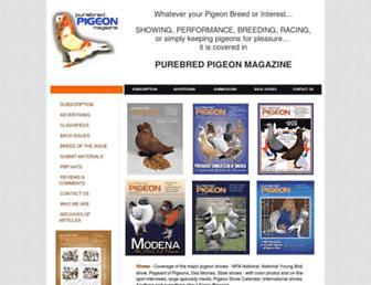 purebredpigeon.com screenshot