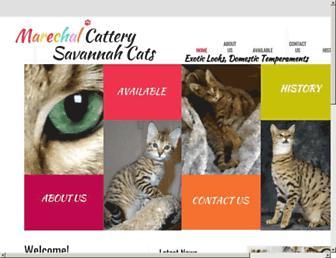 D1b6008948a95eb51d803ee9e874b280b690f2d0.jpg?uri=savannahcats
