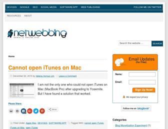 netwebbing.com screenshot