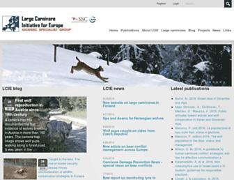 lcie.org screenshot