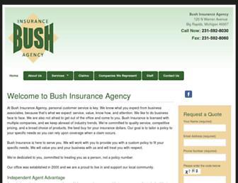 bushinsurance.net screenshot
