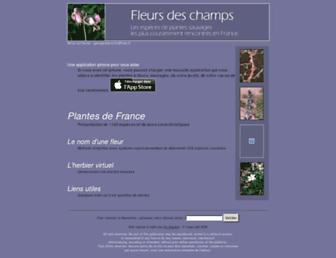 Df2dec453f9e122c350f2e4925823b43e9039720.jpg?uri=fleurs-des-champs