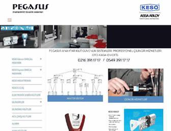 pegasuskey.com.tr screenshot