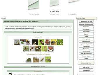 E4d2c0281ffd4d331e042de5908005b0ff97c2cf.jpg?uri=insecte