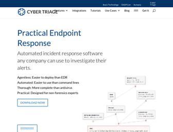 cybertriage.com screenshot
