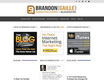 brandongaille.com screenshot