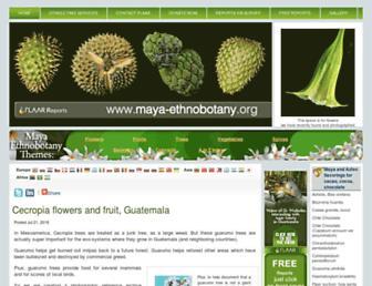 Fa23cc75acd6149e953ad1c88a0aeffacdd0b82d.jpg?uri=maya-ethnobotany