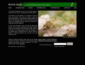 Fac2027541fafcbe68294b95c740a5f76469c5fb.jpg?uri=britishbugs.org