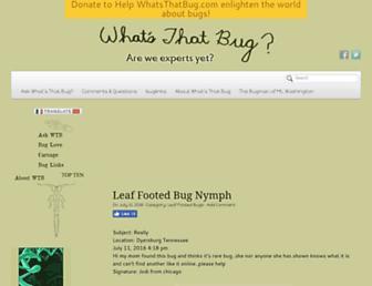 Thumbshot of Whatsthatbug.com