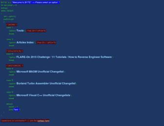 bytepointer.com screenshot